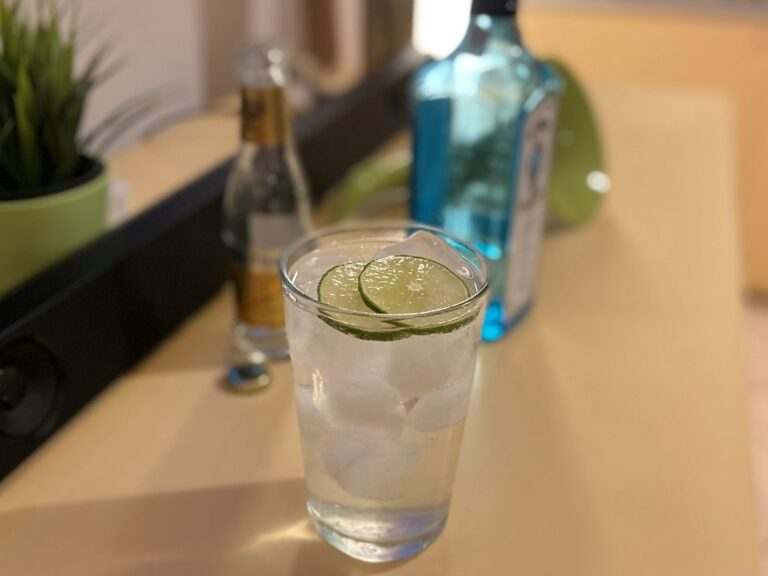 gin tonic preparato in casa